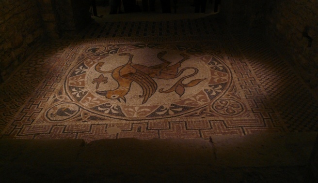spooky floor cathedral bitonto
